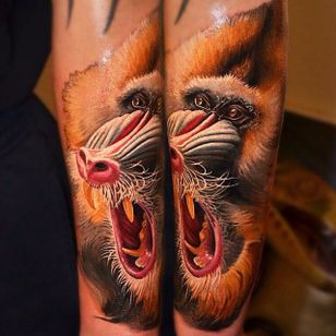 Fierce animal portrait via @yan_vilks #YanVilks #realism #realistic #animal