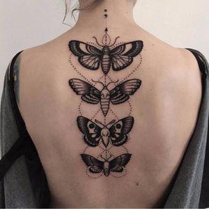 Um lindo grupinho de mariposas #MaReeni #mariposa #moth #inseto #bug #deathmoth #pontilhismo #dotwork #blackwork #group #grupo #tradicional #traditional