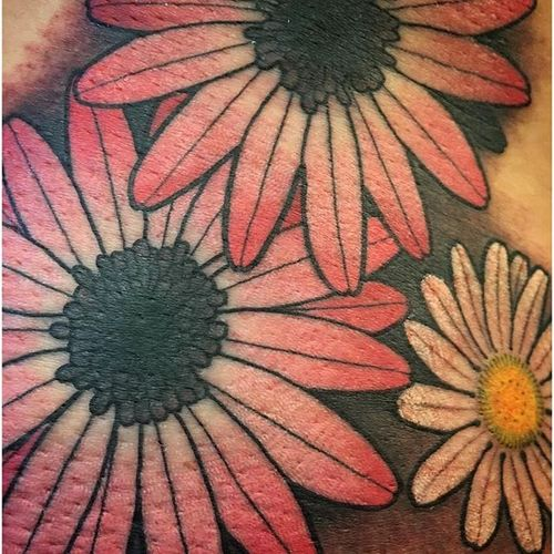 Delicate white and pink daisy tattoo by Chuck Gordon. #daisy #flower #traditional #neotraditional #ChuckGordon