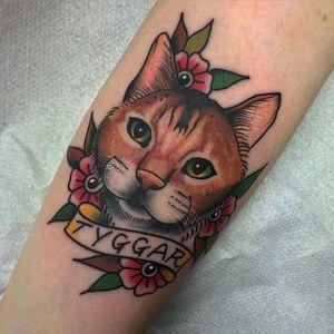 Tyggar the ginger cat by Chris Jenko. #traditional #banner #cat #feline #flower #ChrisJenko