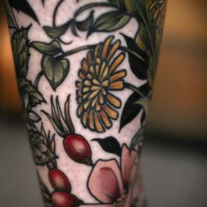 Botanical details via onholliday #dandelion #roses #botanical #floral #color #Artnouveau #KirstenHolliday