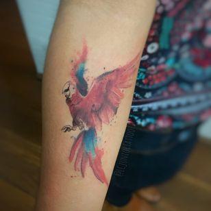 Arara #LCJunior #brazilianartist #brasil #brazil #tatuadoresdobrasil #aquarela #watercolor #arara #ave #bird #passaro