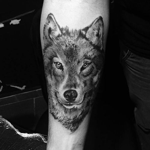 Lobo por KD Art! #KDART #Tatuadoresbrasileiros #tattoobr #SãoCetano #wolf #lobo #blackandgrey #pretoecinza