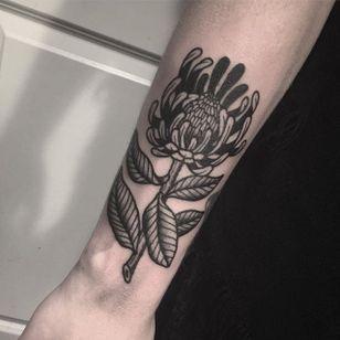 Protea by Jack Ankersen (via IG-jack_ankersen) #illustrative #black #linework #floral #flowers #JackAnkersen