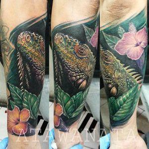 Iguana Tattoo by Atawanata #iguana #iguanatattoo #lizardtattoo #lizardtattoos #reptiletattoo #reptiletattoos #reptile #lizard #realisticlizard #relaisticiguana #Atawanata