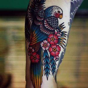 Parakeet by Martina Ekenberg (via IG-electricmartina) #colorful #bright #bold #traditional #animals #MartinaEkenberg