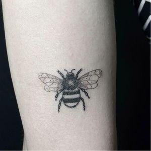 #AmandaSantana #brasil #brazil #brazilianartist #TatuadorasDoBrasil #fineline #delicate #delicado #abelha #bee #inseto #bug #blackwork #pontilhismo #dotwork