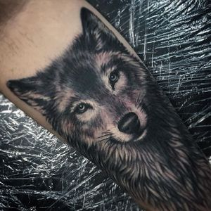 Cute wolf by Beau Parkman. #blackandgrey #realism #BeauParkman #wolf