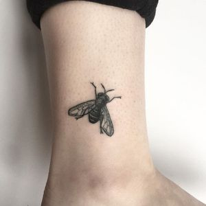 Fly Tattoo by Kate Holley #fly #flytattoo #handpoked #handpokedtattoo #handpoke #handpoketattoo #handpoketattoos #handpokeartist #KateHolley