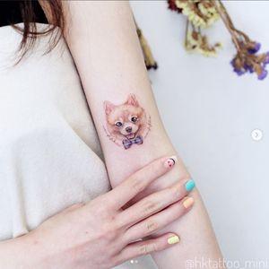 A fancy Pomeranian by Mini Lau (IG—hktattoo_mini). #microtattoo #MiniLau #petportrait #Pomeranian #realism