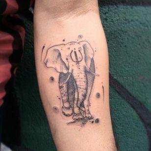 #MatheusAlves #brasil #brazil #brazilianartist #tatuadoresdobrasil #sketch #elefante #elephant #blackwork #pontilhismo #dotwork