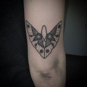 Handpoked tattoo by Cate Webb. #CateWebb #linework #handpoke #sticknpoke #handpoketattooartist #moth