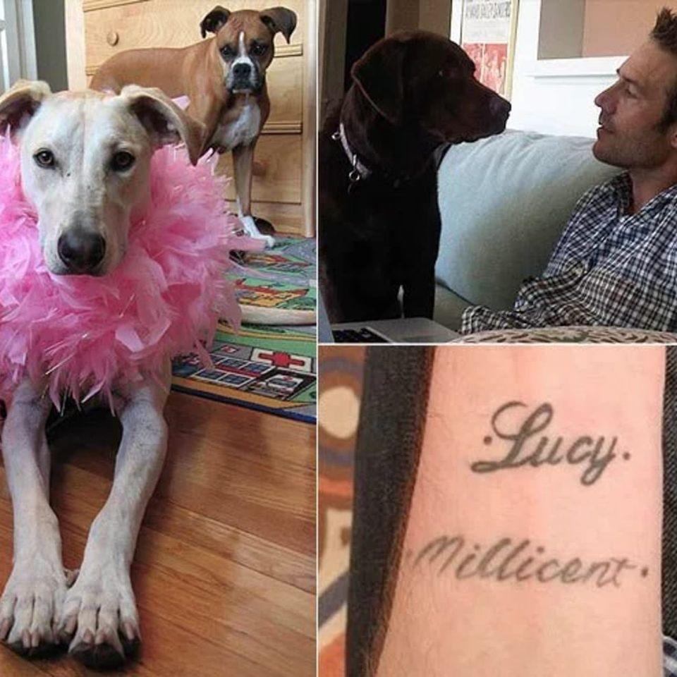 Michael Vartan's tattoos dedicated to his two dogs. #celebrities #pets #michaelvartan