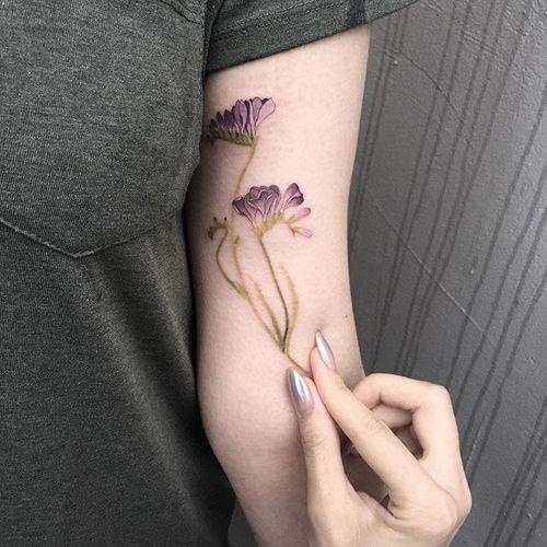 #AnastasiaSlutskaya #nastyafox #gringa #colorido #colorful #flor #flower #planta #plant