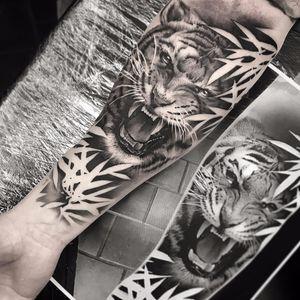 Howlin' tiger by Alexander Wångdahl #AlexanderWangdahl #blackandgrey #realism #realistic #hyperrealism #photorealism #tiger #junglecat #jungle #cat #wildlife #bamboo #nature #fangs #fur #tattoooftheday