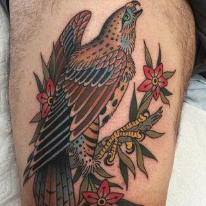 Pretty bird via @deandenney #DeanDenney #traditional #bird