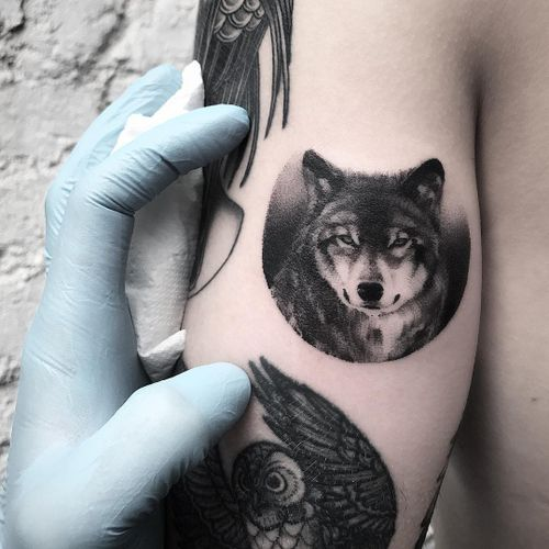 Wolf tattoo by Ricky Williams #RickyWilliams #besttattoos #blackandgrey #realism #realistic #hyperrealism #wolf #animal #forest #small #detailed #dog #petportrait #tattoooftheday