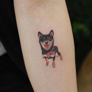 Shiba Inu dog tattoo by Saegee #Saegee #saegeemtattoo #dogtattoos #color #realistic #realism #hyperrealism #dog #petportrait #shibainu #bandana #cute #animal