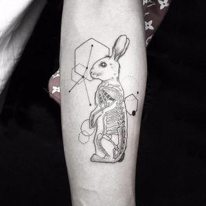 Bunny Within by Okanuckun #Okanuckun #linework #blackwork #dotwork #rabbit #bunny #constellation #geometry #shapes #abstract #bones #anatomy #animal #nature #tattoooftheday