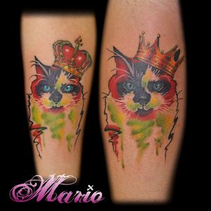 Gatinho Rei. #InkedByMario #MarioGregor #aquarela #watercolor ##TatuadorGringo #colorida #colorful #gato #cat #rei #king #coroa #crown