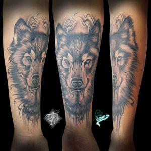 #lobo #wolf #pretoecinza #blackandgrey #EdsonJunior #Electricink #brasil