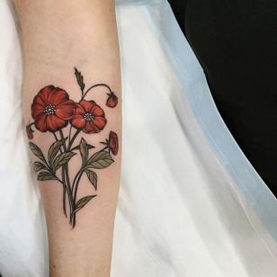 Poppies by Sophia Baughan (via IG-sophiabaughan) #neotraditional #artnouveau #color #naturalist #poppies #flowers #SophiaBaughan
