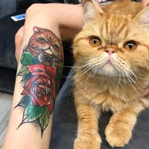 Foto que o tatuador Lucas Ferreira recebeu da sua cliente da tattoo cicatrizada. #LucasFerreira #tatuadoresbrasileiros #cat #cattattoo #gatotattoo