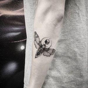 Moth Tattoo by Thomas Eckeard #moth #mothtattoo #blackworkmoth #blackwork #blackworktattoo #blackworktattoos #detailedtattoo #smalltattoo #detailedblackwork #ThomasEckeard