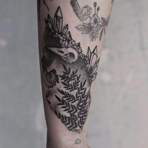 Feito por Yara Floresta #YaraFloresta #brazil #brasil #brazilianartist #TatuadorasDoBrasil #blackwork #pontilhismo #dotwork #skull #caveira #planta #plant #concha #shell #cristais #crystal