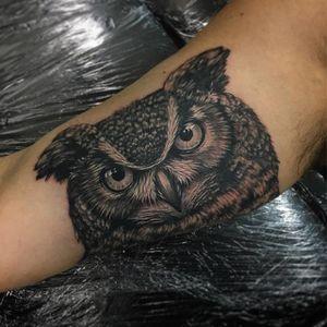 Black and grey owl tattoo by Beau Parkman. #blackandgrey #realism #BeauParkman #bird #owl
