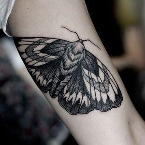Moth Tattoo by Pavlo Balytskyi #moth #mothtattoo #blackwork #blackworktattoo #illustrative #illustrativetattoo #blackink #PavloBalystskyi