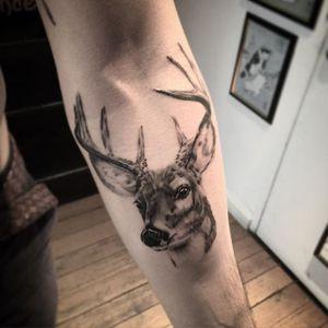 Deer head tattoo by Jonas Bødker. #blackandgrey #realism #JonasBødker #deer #deerhead