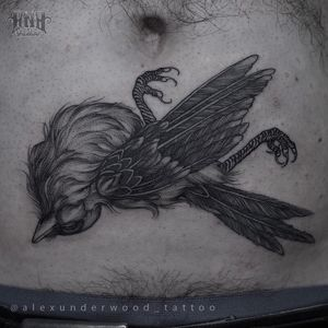 Dead bird tattoo by Alex Underwood #AlexUnderwood #darkarttattoos #blackwork #linework #illustrative #bird #feathers #wings #corpse #death #nature #tattoooftheday
