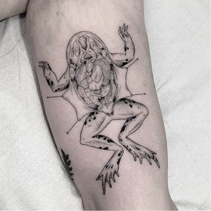 Frog dissection tattoo by Marla Moon #MarlaMoon #llustrativetattoos #illustrative #sketch #drawing #linework #fineline #dotwork #frog #dissection #nature #anatomy #guts #toad #animal #amphibian