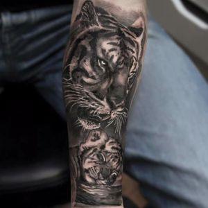 #tigre #tiger #KoryAngarita #realismo #natureza #talentogringo #brasil #portugues