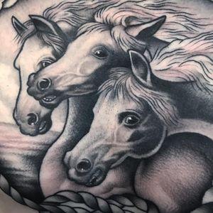 Pharaoh's Horses tattoo by David Armacost #DavidArmacost #horsetattoos #blackandgrey #traditional #pharaohshorses #horses #animal #nature