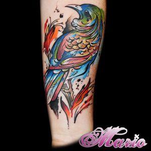 #InkedByMario #MarioGregor #aquarela #watercolor #TatuadorGringo #colorida #colorful #passaro #bird
