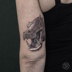 Hippo by Sven Rayen (via IG-svenrayen) #hippo #geometric #linework #3D #animal #blackandgrey #illustrative #SvenRayen