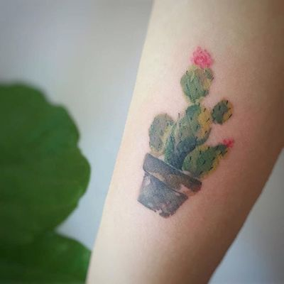 Cactus tattoo by Tattooist G. NO. #TattooistGNO #GNO #GNOtattoo #fineline #pastel #watercolor #cactus