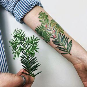 Botanical by Rit Kit #RitKit #color #plant #flower #botanical #realism #tattoooftheday