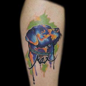 #InkedByMario #MarioGregor #aquarela #watercolor #TatuadorGringo #colorida #colorful #cachorro #dog