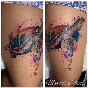 #tartaruga #turtle #MarcellusDias #teologo #aquarela #watercolor #brasil #portugues