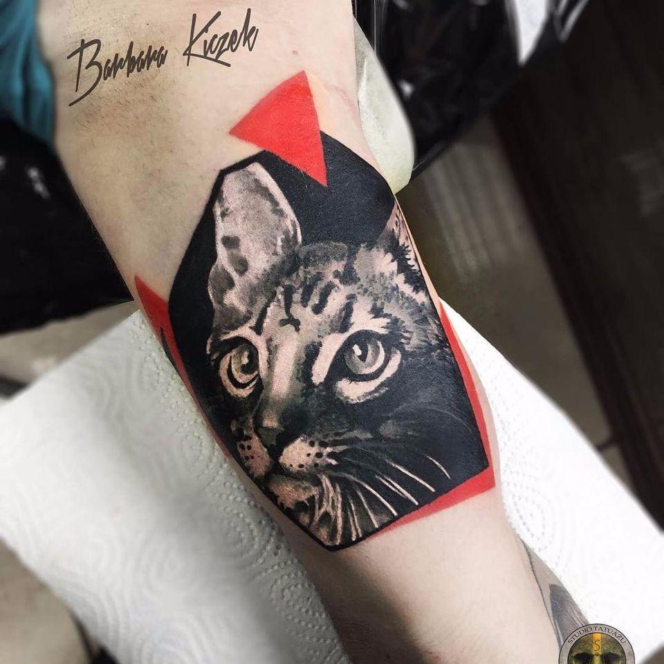 Gatineo #BarbaraKiczek #gringa #grafico #graphic #comics #gato #cat #catlover #pet #petlover #realismo #realism