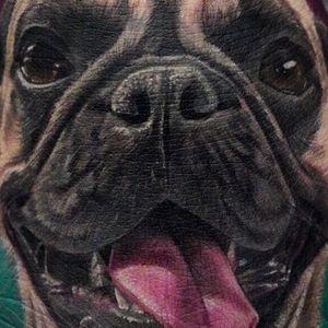 Pug tattoo by Vic Vivid #VicVivid #color #realism #realistic #hyperrealism #pug #petportrait #animal #dog #cute #nature #tattoooftheday