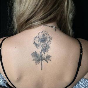Blackwork flower by Mary Tereshchenko #darkartist #blackworkerssubmission #blxckink #blackwork #blacktattooart #botanicalart #plantillustration #floral #flower #plant #botanical #btattooing #MaryTereshchenko