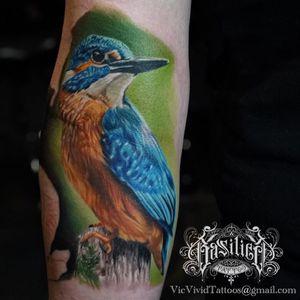 A noble looking kingfisher via Vic Vivid (IG—vicvivid). #color #kingfisher #realism #songbirds #VicVivid