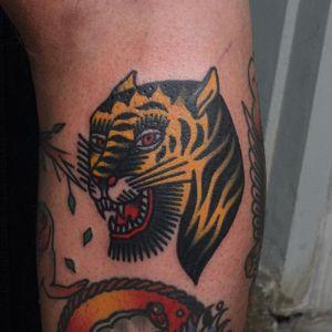 Tiger Tattoo by Jang Yongbin #tiger #BertGrimm #oldschool #traditional #JangYongbin