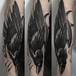 Blackwork Crow Tattoo by Canijo Marciano #blackworkcrow #crow #blackcrow #raven #blackbird #blackworkbird #blackworkartist #CanijoMarciano