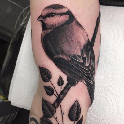 Birdy by Steve H Morante #SteveHMorante #blackandgrey #nature #bird #leaves #wings #feathers #realism #realistic #hyperrealism #branch #tattoooftheday