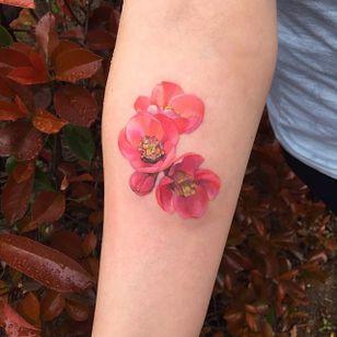 Poppies by Amanda Wachob (via IG-amandawachob) #flowers #floral #watercolor #color #illustrative #AmandaWachob